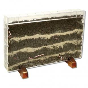 schaukasten f r das beobachten der regenw rmer. Black Bedroom Furniture Sets. Home Design Ideas
