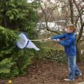 Insekten-Schmetterlings-Fangnetz mit Stiel