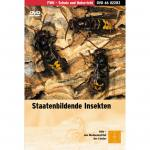 Staatenbildende Insekten