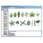 Pflanzenkunde im Unterricht