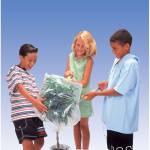 Gasteströhrchen, Kohlendioxid I