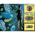 Mikroorganismen als Krankheitserreger