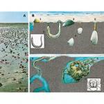 Das Meer und seine Lebensräume