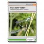 Metamorphosen - Verwandlungskünstler im Tierreich