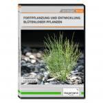 Fortpflanzung und Entwicklung blütenloser Pflanzen