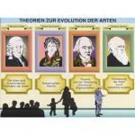 10 Transparentsätze zur Evolution 2