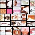 Serie 4300 Insekten, Grundserie