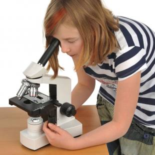 Mikroskop WL 1810 LED Elementar