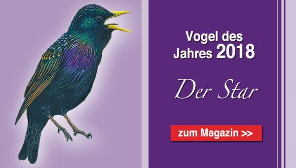 Startseite Vogel des Jahres