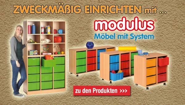 Startseite-modulus-2016