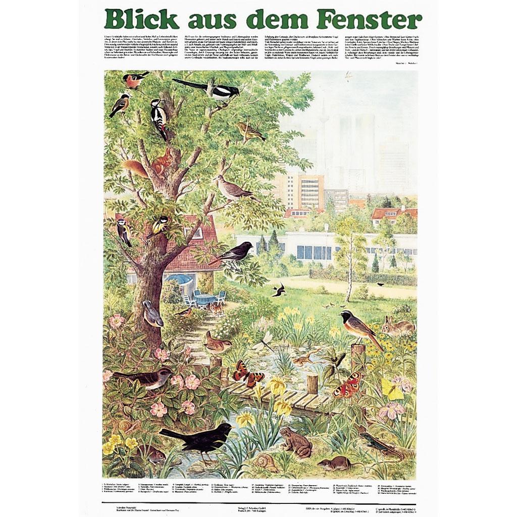 Blick aus dem fenster poster  Detailgenaue Naturtafeln von Schreiber - hier online im WL-Versand ...