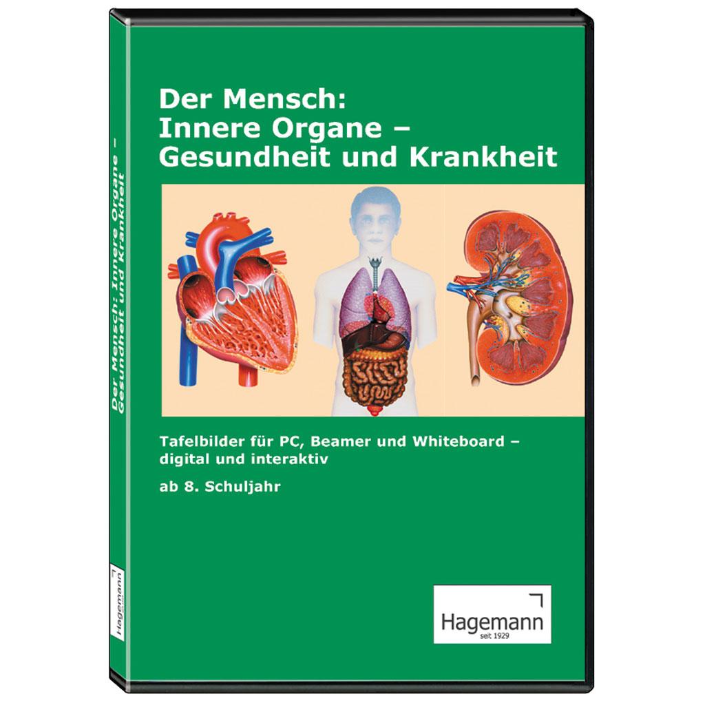 Der Mensch: Innere Organe – Gesundheit und Krankheit-W-22542