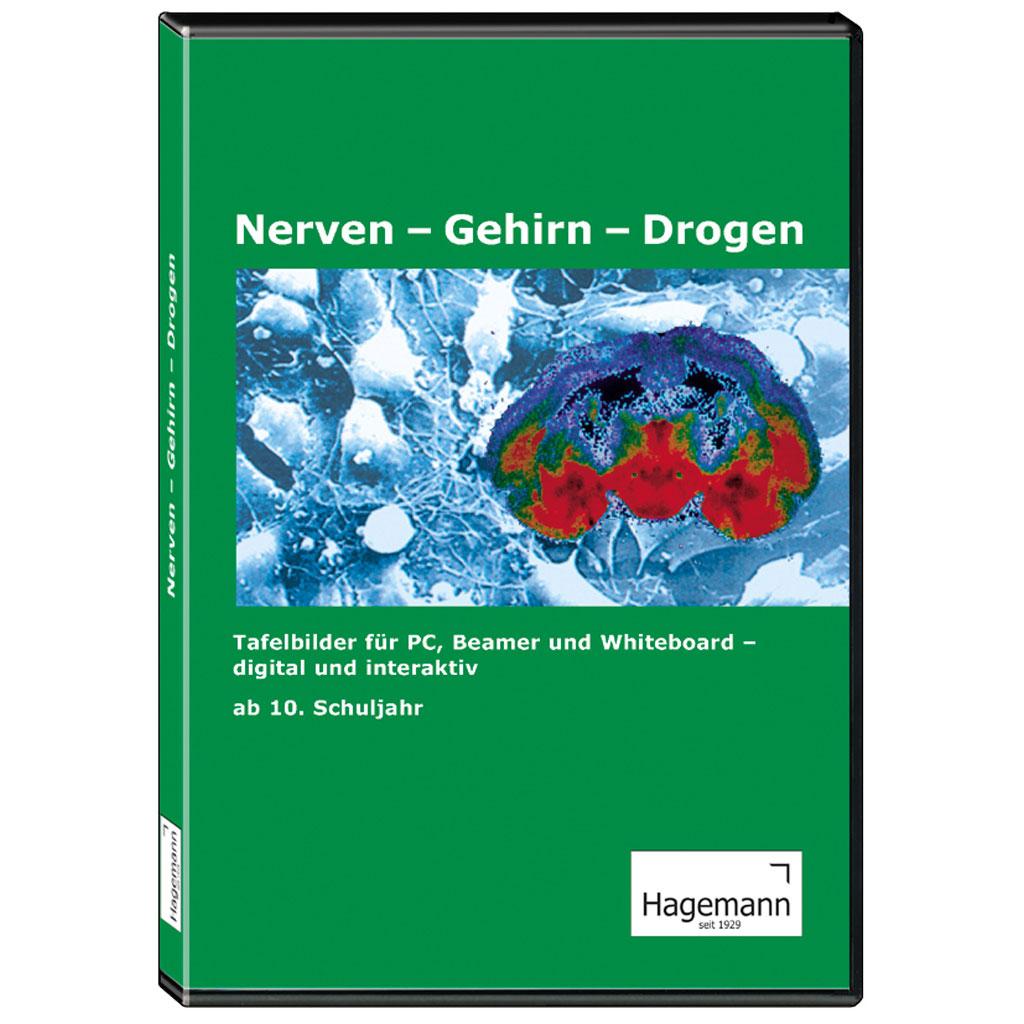 Nerven – Gehirn – Drogen-W-22550