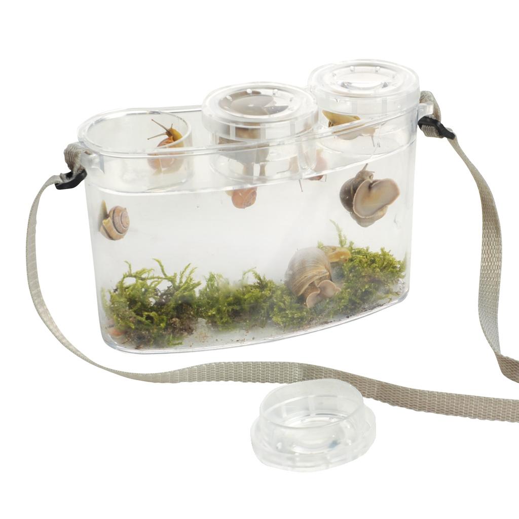 Botanikbox - mit drei Lupenbechern