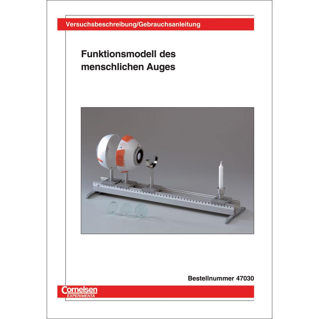 """Funktionsmodell """"Menschliches Auge""""-W-70822"""