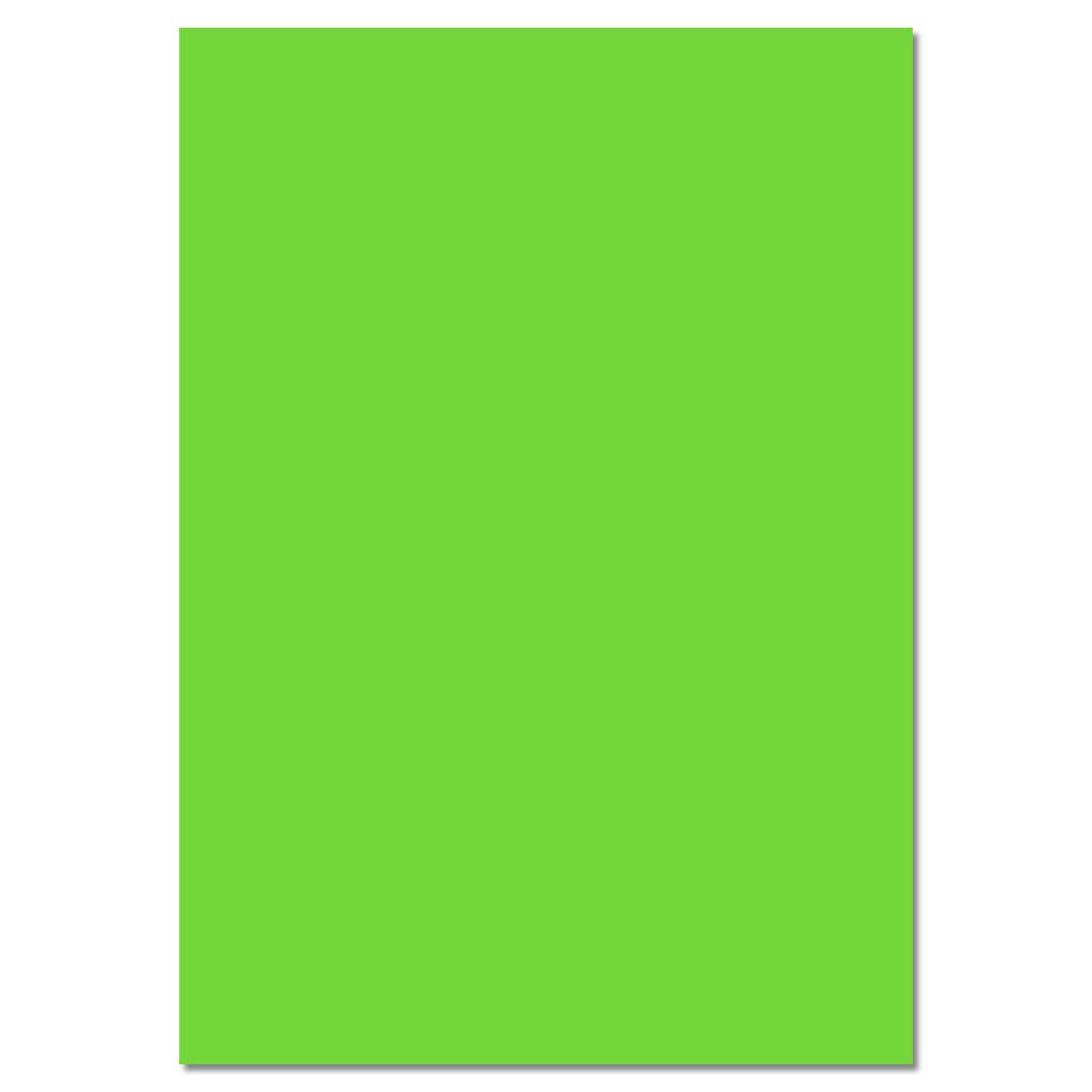 Fotokarton 220g/m² - hellgrün