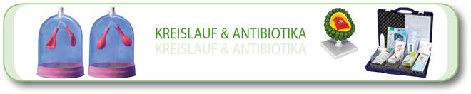 Kreislauf & Antibiotika