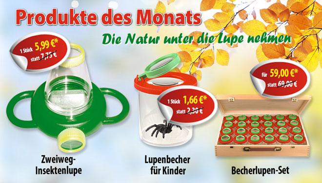 Produkte des Monats Oktober: Becherlupen