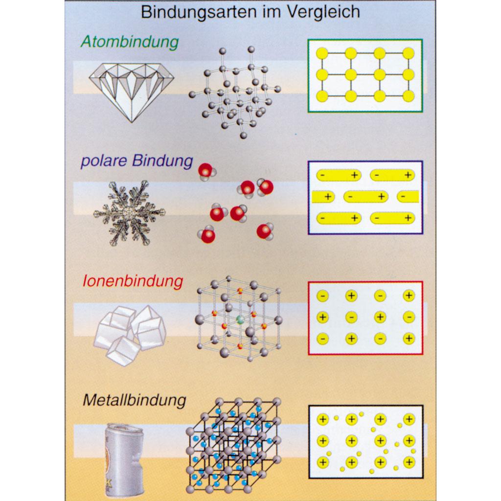 view pharmakologische aspekte von immunreaktionen